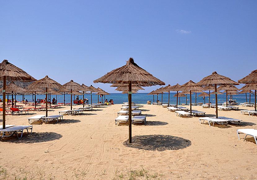 Mylopotas beach in Ios  Hotels