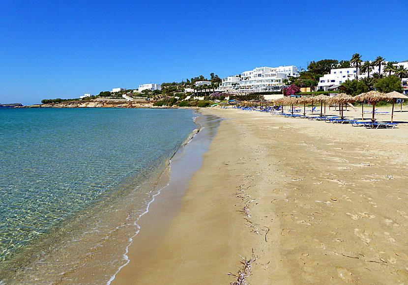 Golden Beach In Paros Accommodation